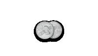 """Autentsete müntide komplekt """"Kosmose vallutamine""""10"""