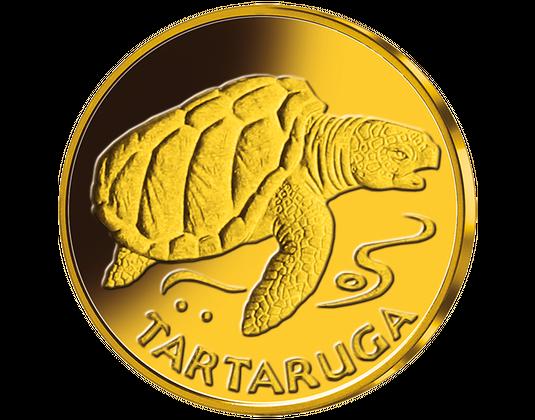 Kilpkonn münt