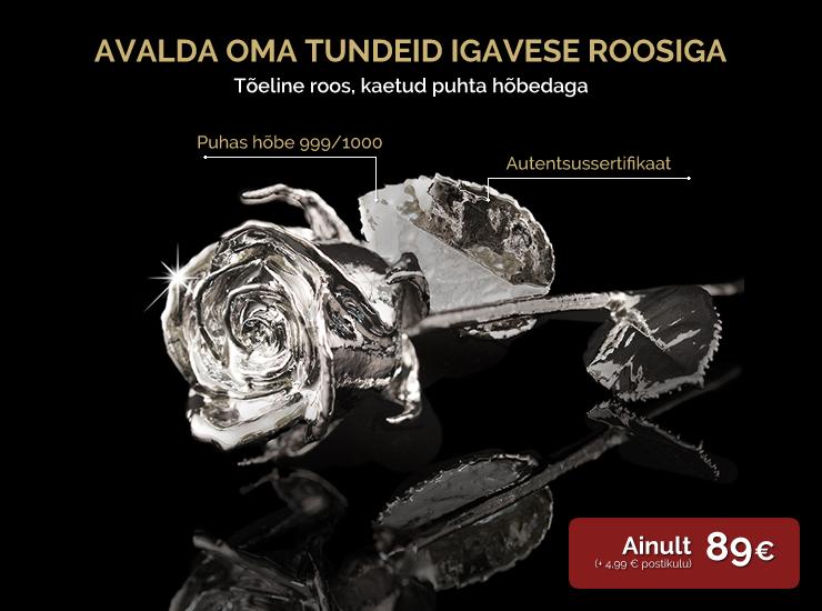 """""""Tõeline roos"""", kaetud puhta hõbedaga"""