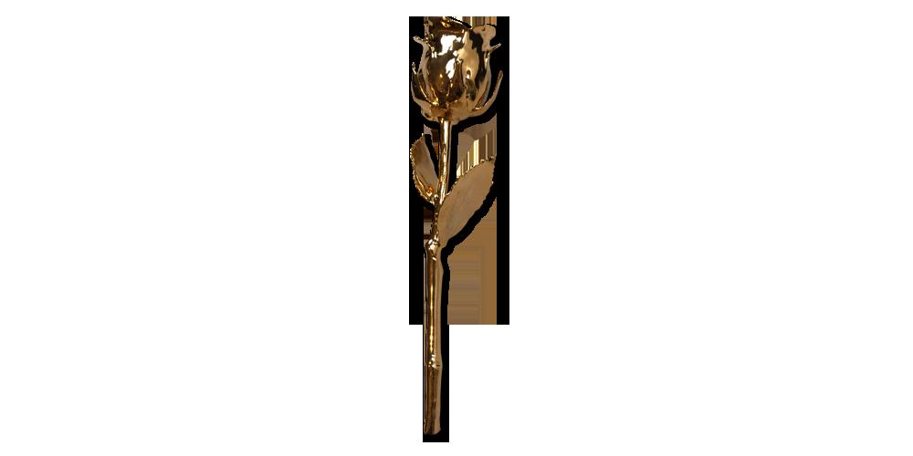 Tõeline roos, kullaga kaetud